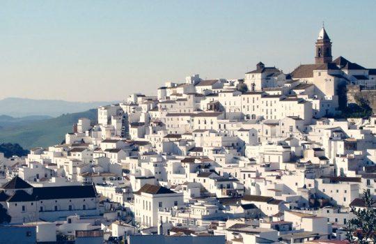 Ruta de los Pueblos Blancos y Ronda desde Sevilla
